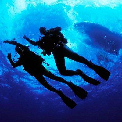 Reef Dive Kuşadası