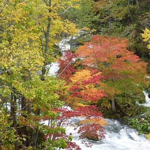 滝見橋景観3