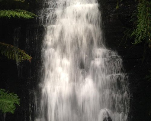 Westmoreland Falls