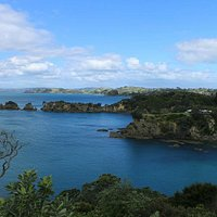 View from one of the individual walks on Waiheke Island
