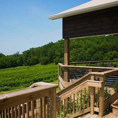 Covered Deck overlooking Vineyard