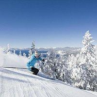 Skiing powder - Diamond Peak Ski Resort