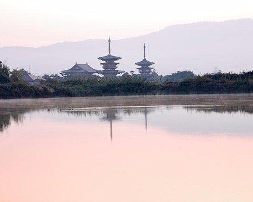 朝 大池からの薬師寺