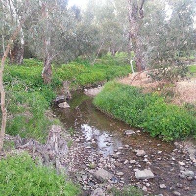 Flowing Creeks