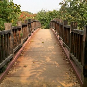 The whole Seoripul Park offers wonderful walks right in the city. There are lots of ups and down