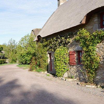 Rebenbewachsenes originalgetreues Haus