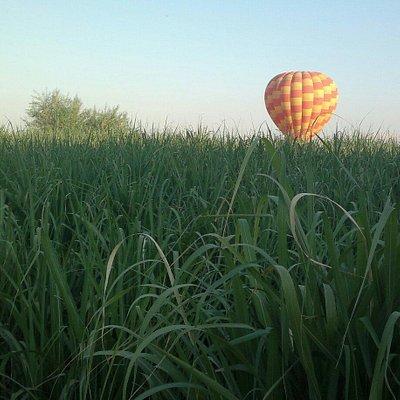 Salem Hot Air  Balloons Luxor