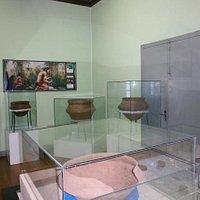 Museu Antônio Selistre de Campos