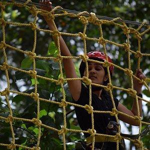 Tree Top Adventure .