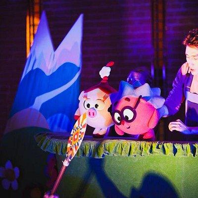 Интерактивные кукольные спектакли со Смешариками.