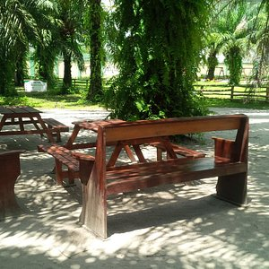 Park Benches for relaxation