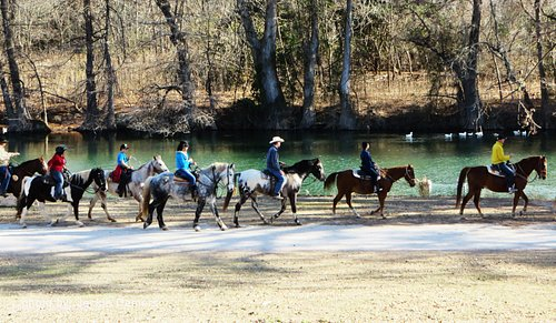 Horseback riding along the Medina River
