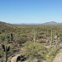 Browns Ranch Scottsdale AZ