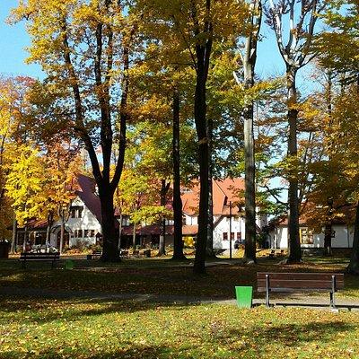 Park Giszowiec