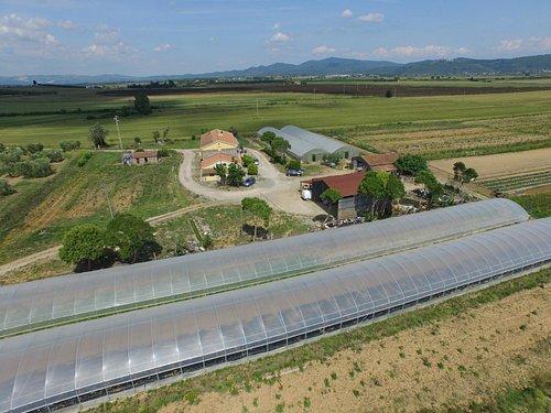 Azienda Agricola La Màgia dall'alto