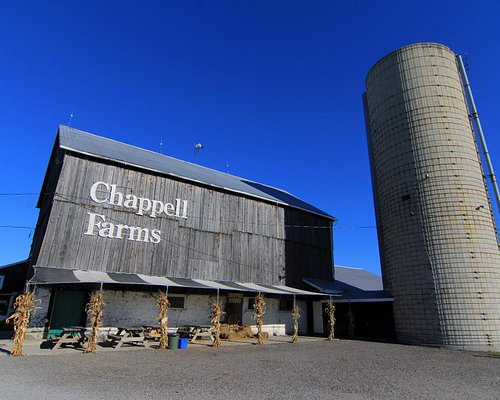 Chappell Farms