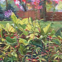 Cleome by Janet Stoeke