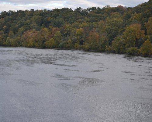 Delaware River @ Bull's Island Rec. Area