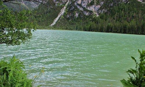 Verde..montagna