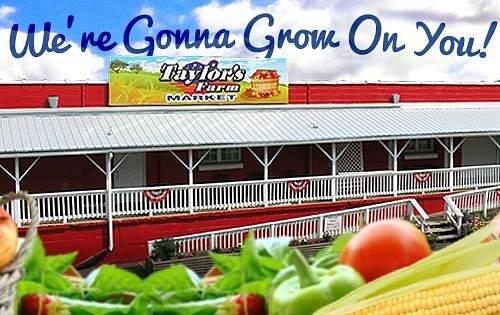 Taylor's Farm Market