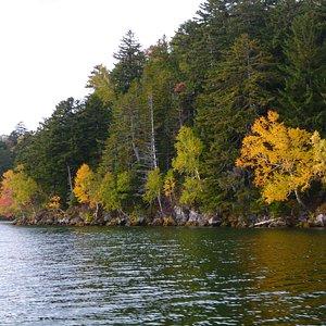 scenery around the lake