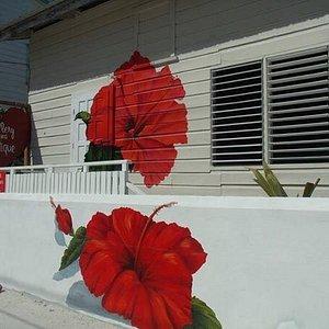 Red flower Gallery