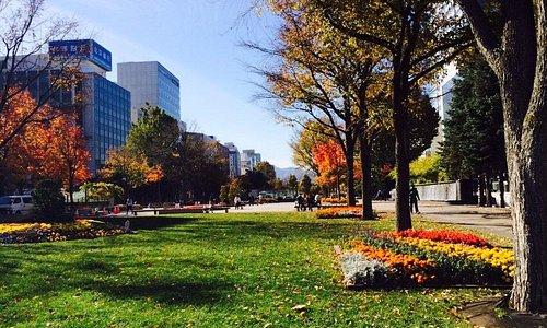 秋の大通公園