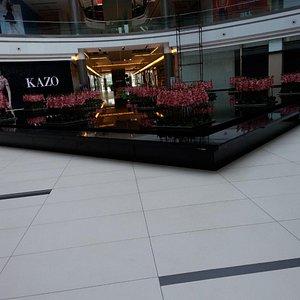 Koregaon Park Plaza - Main Lobby