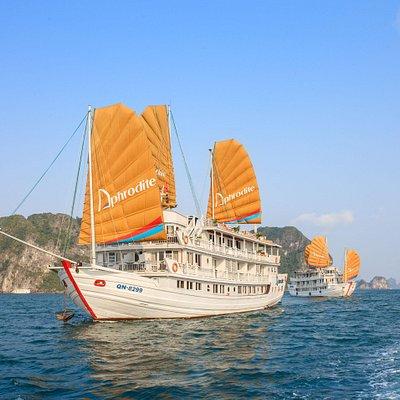 Aphrodite cruises- luxury boutique 5-star cruises