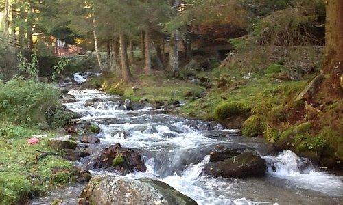 Ramna river