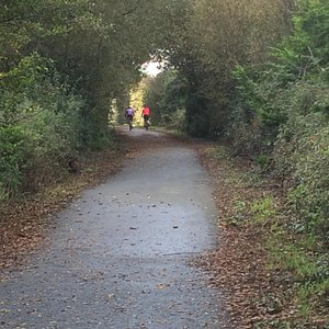 Red Squirrel Trail - October 2015