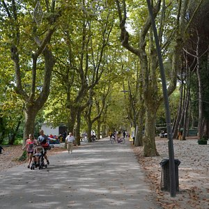 Парк в Виареджо