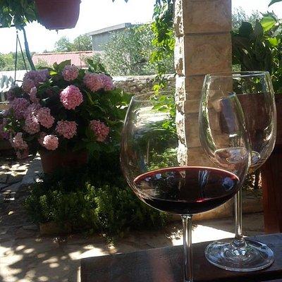 Wine tasting Šolta