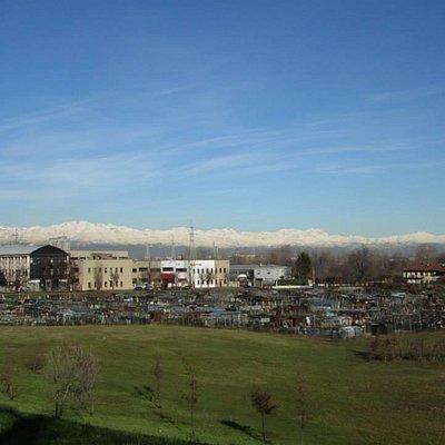 Panorama con orti urbani da via Botticelli