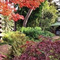 Entrée du jardin japonais