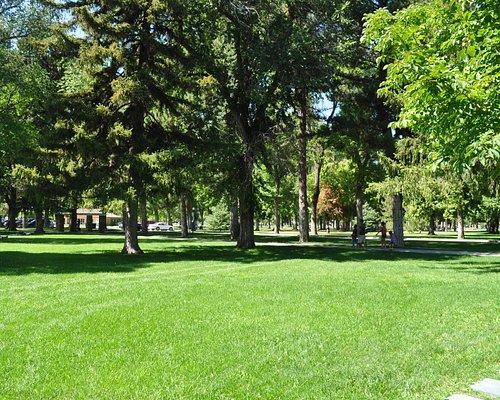 Красоты парка