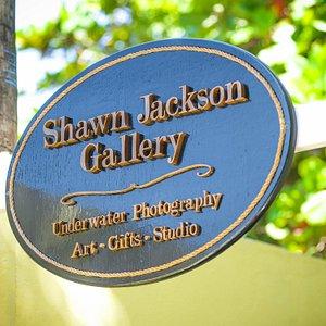 Shawn Jackson Gallery