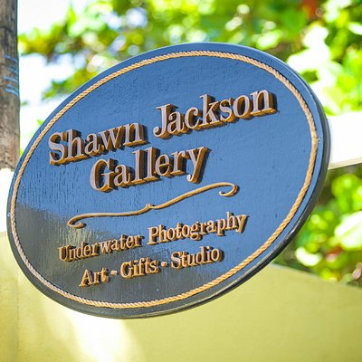 Shawn Jackson Gallery
