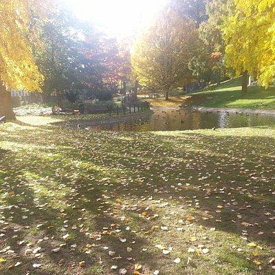 El parque en otoño