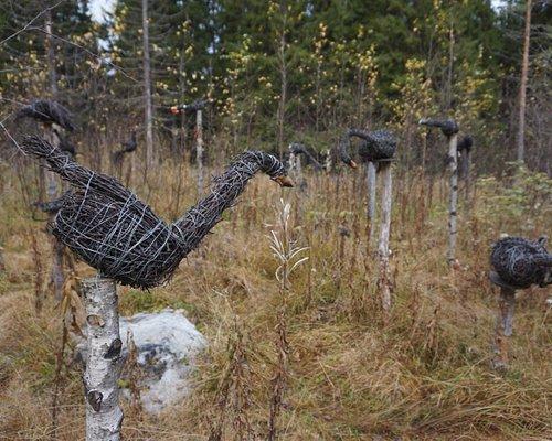 Environmental Art Festival