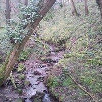 Offa's dyke near Oswestry