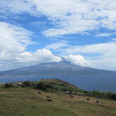 Вид на вулкан острова Пику