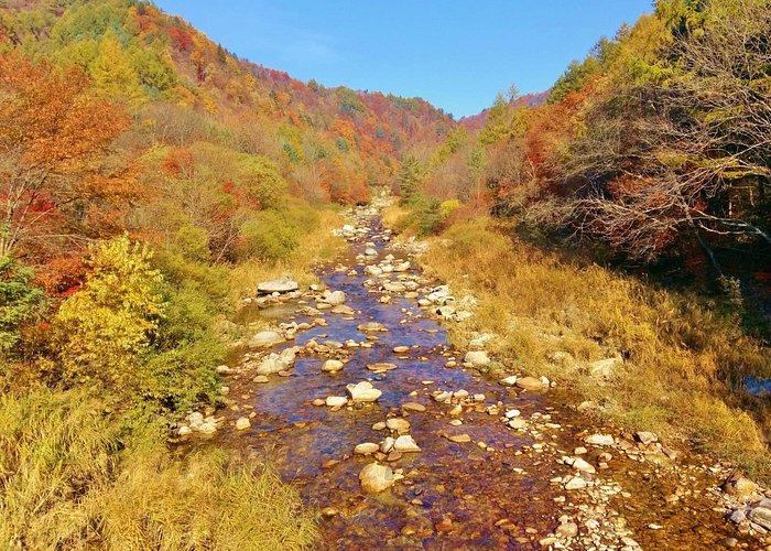 Odaesan Mountain Fall Foliage