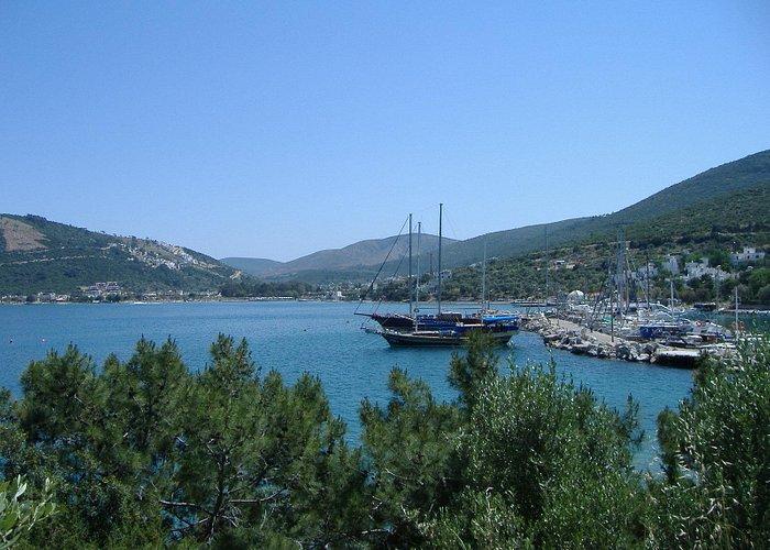 Harbor in Torba
