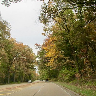 Autumn on GW Memorial Parkway