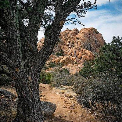 HullyGully Trail