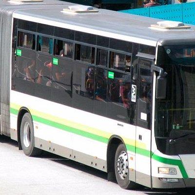 Bus Metroplus 1