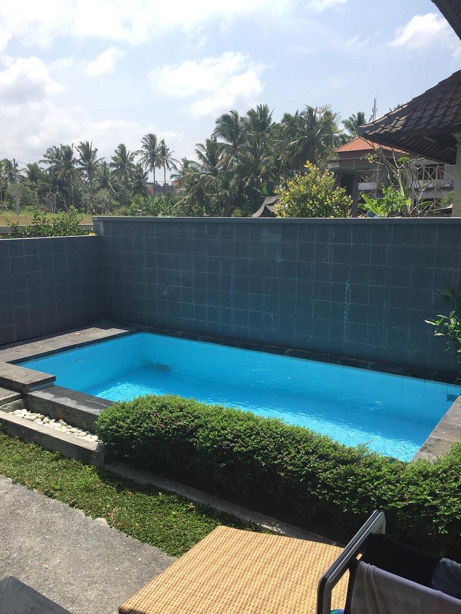 Soca Cantik Villa Prices Reviews Ubud Bali Tripadvisor