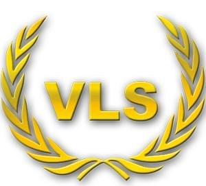 vegas limousine service logo