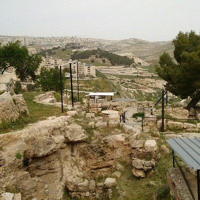 Campo dei Pastori